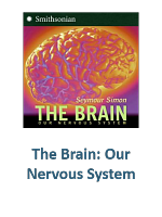 The Brain Our Nervous System Lesson Plans